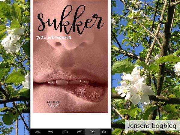 """""""Sukker"""" af Gitte Løkkegaard - boganmeldelse på Jensens bogblog"""