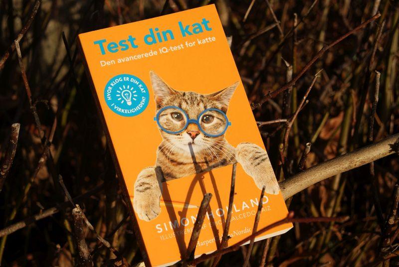 """Test din kat"" af Simon Holland - Bogfinkenn bogblog"