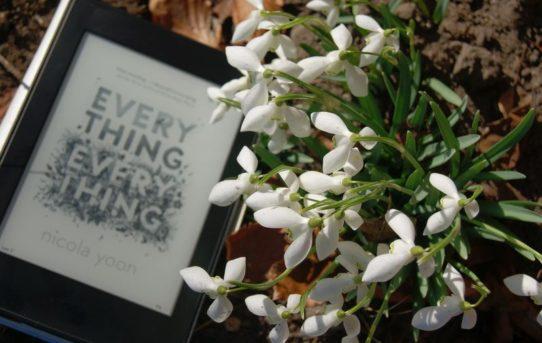 """""""Everything, Everything"""" af Nicola Yoon - boganmeldelse - Bogfinkens bogblog"""